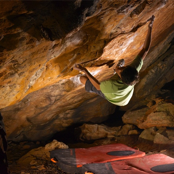 Mirko no Golden Shadow V14